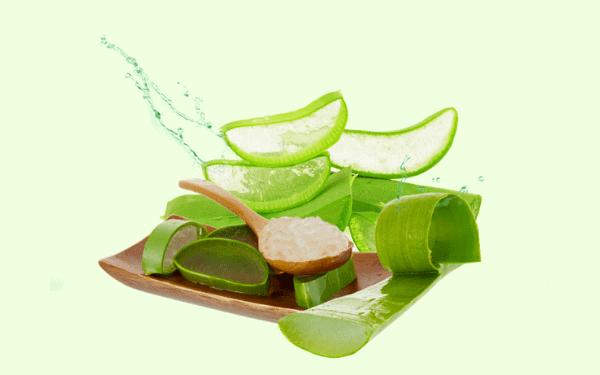 Nha đam có đặc tính chống oxy hóa, mang lại hiệu quả cho quá trình làm dịu và đối phó với mụn